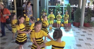 prijepolje sajam meda