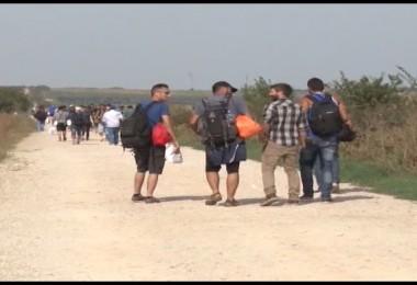 Migranti.mpg.Still001