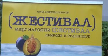 Zestival Vrnjacka banja.mpg.Still001