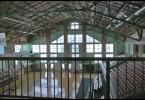 Cajetina-kupovina hale.mpg.Still001